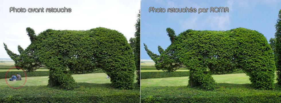 retouche photo Retouche Photo RETOUCHE RHINO 1